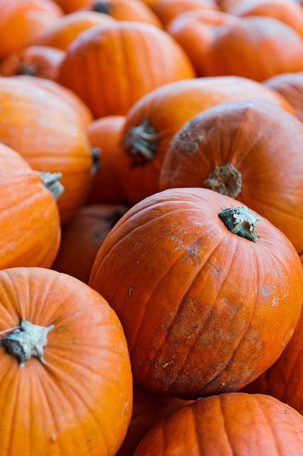 October is here (and so are pumpkin spiced lattes)