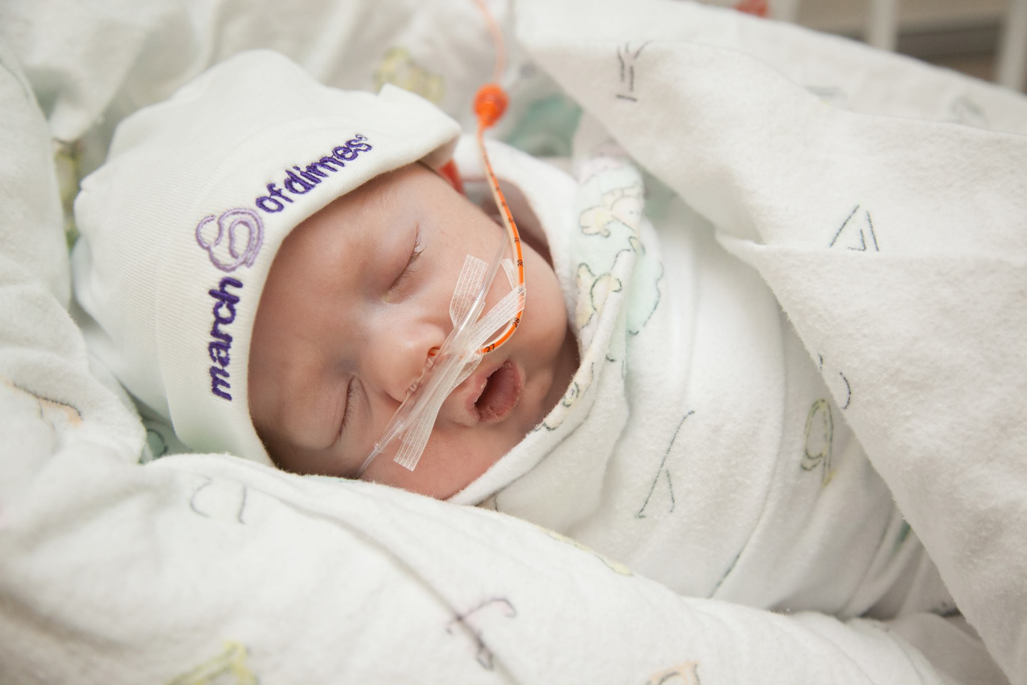 Prematurity awareness month: here's what's happening